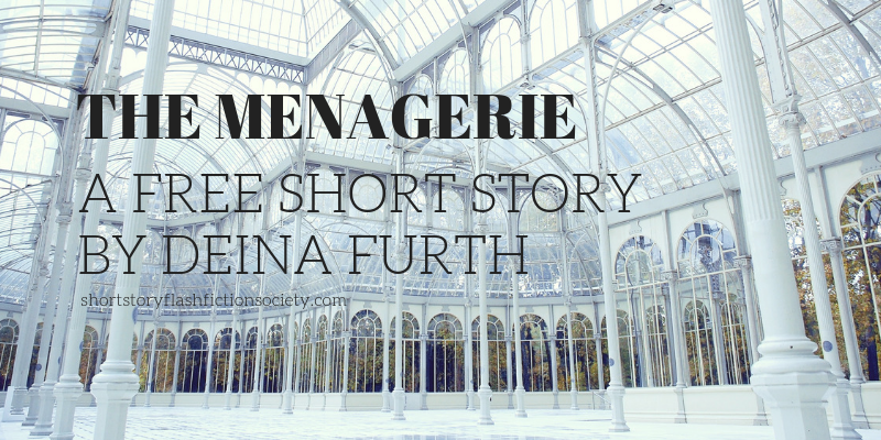 the menagerie by deina furth
